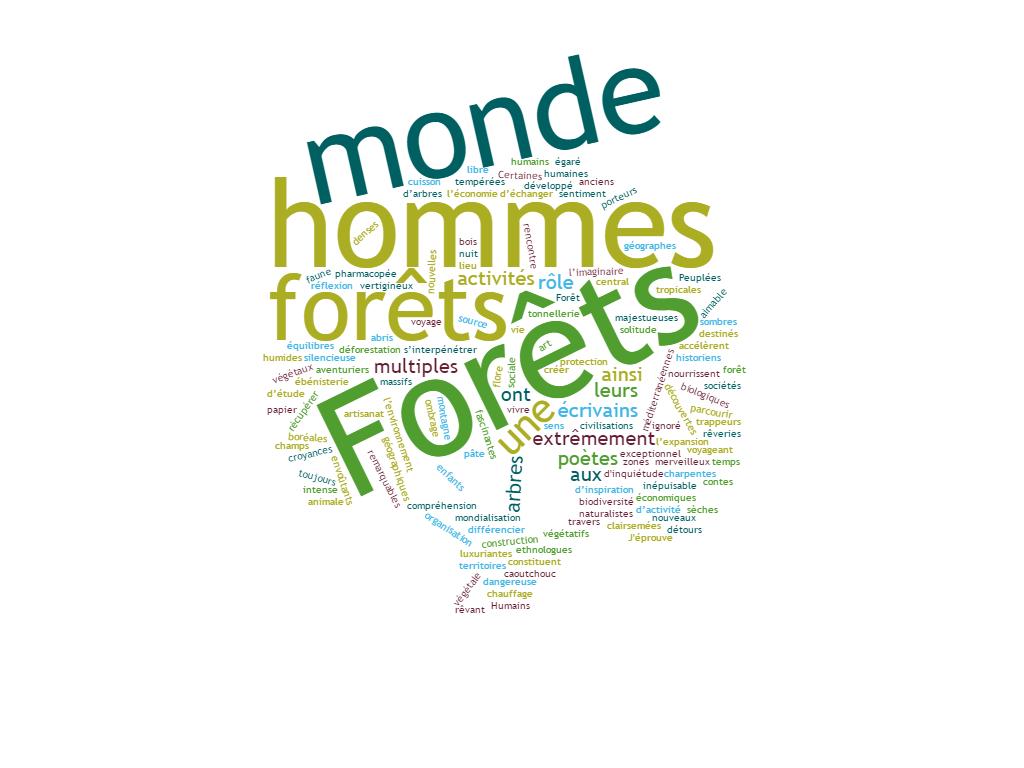 Festival 2019 : Forêts du monde – Forêts des hommes