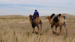 nomade Mongolie