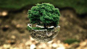 environnement-protection-