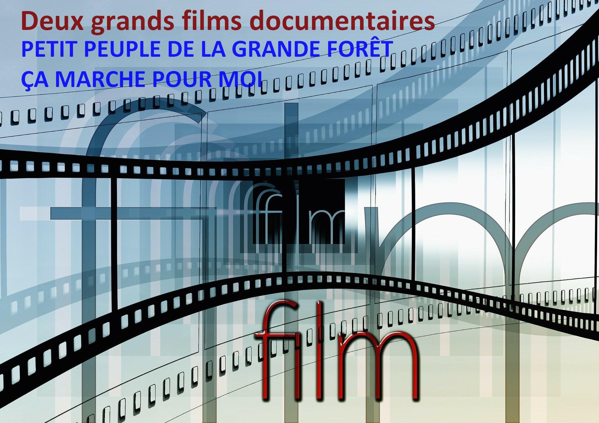Les deux grands films documentaires